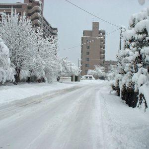 2002年03月トップ画像 03 三月雪