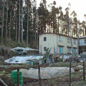 2002年03月トップ画像 06 林とアパート