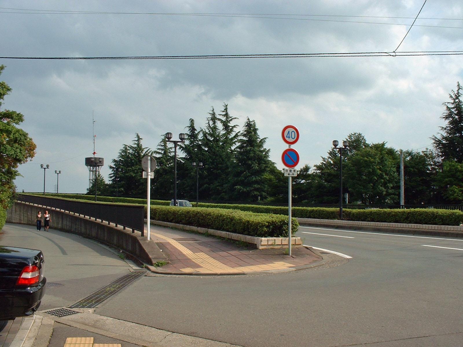 緑の上り道