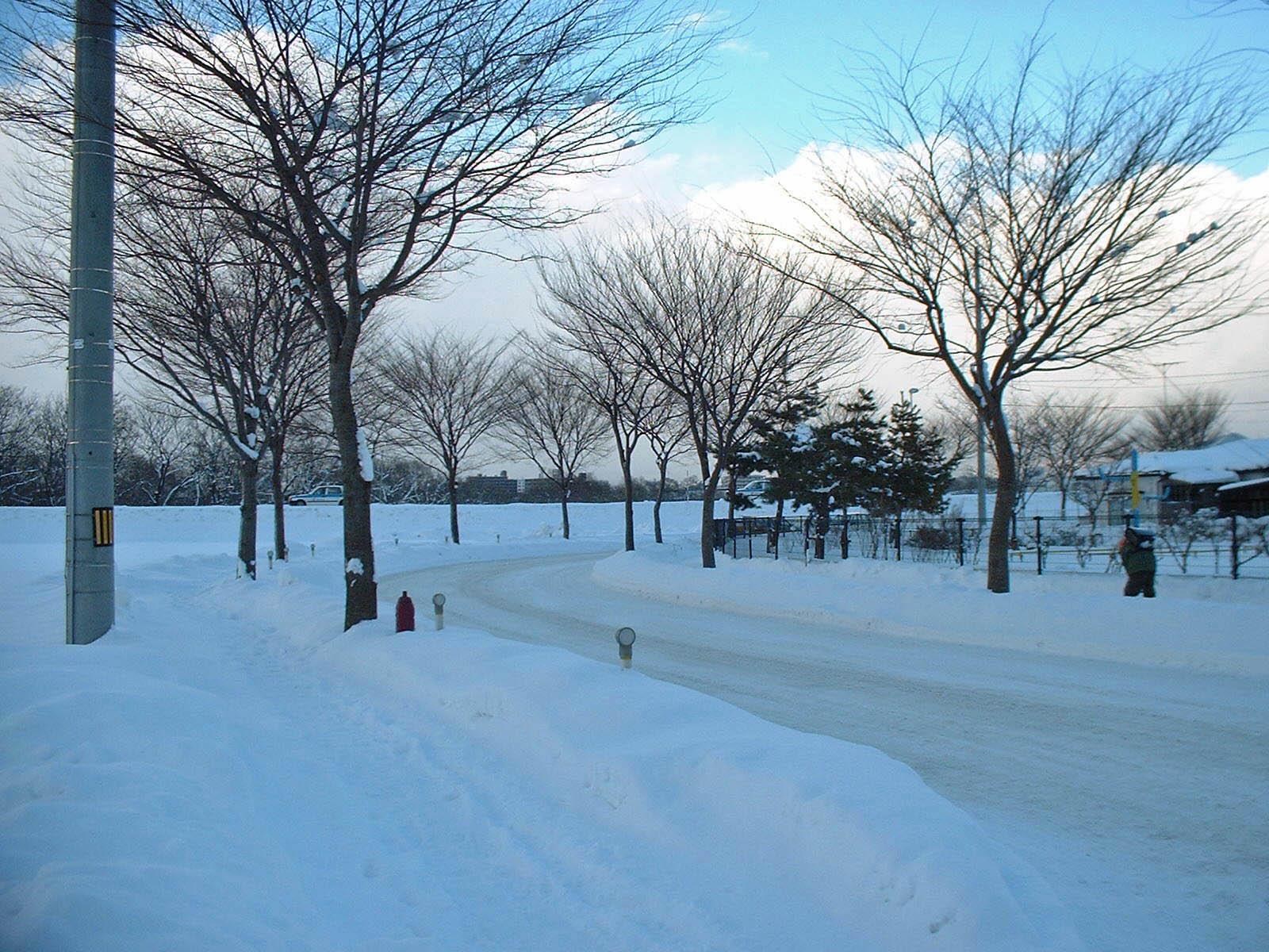雪と雲と木々と