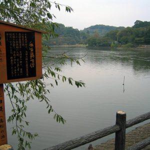 秋の高松の池