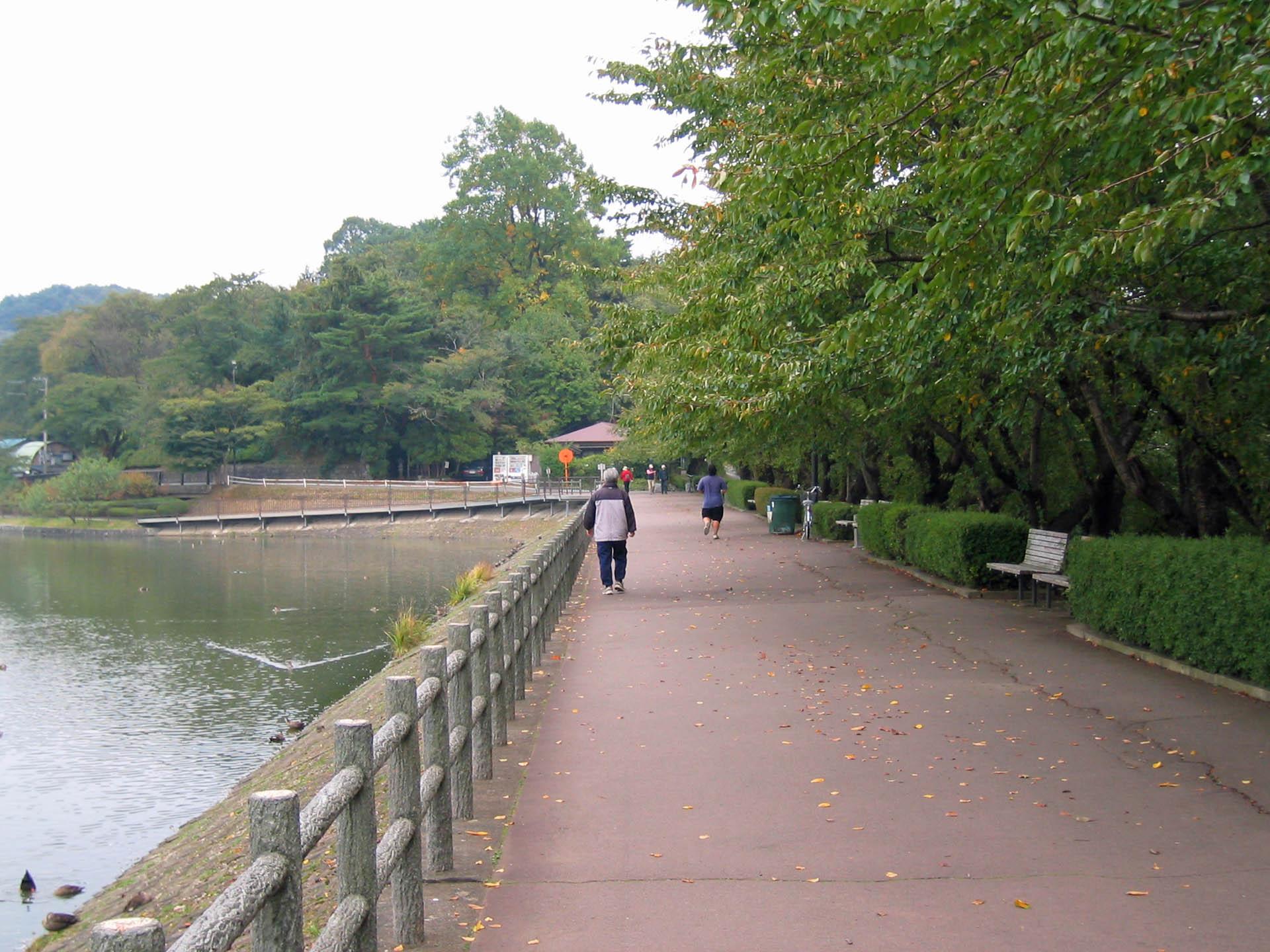 秋の高松の池 Part 2