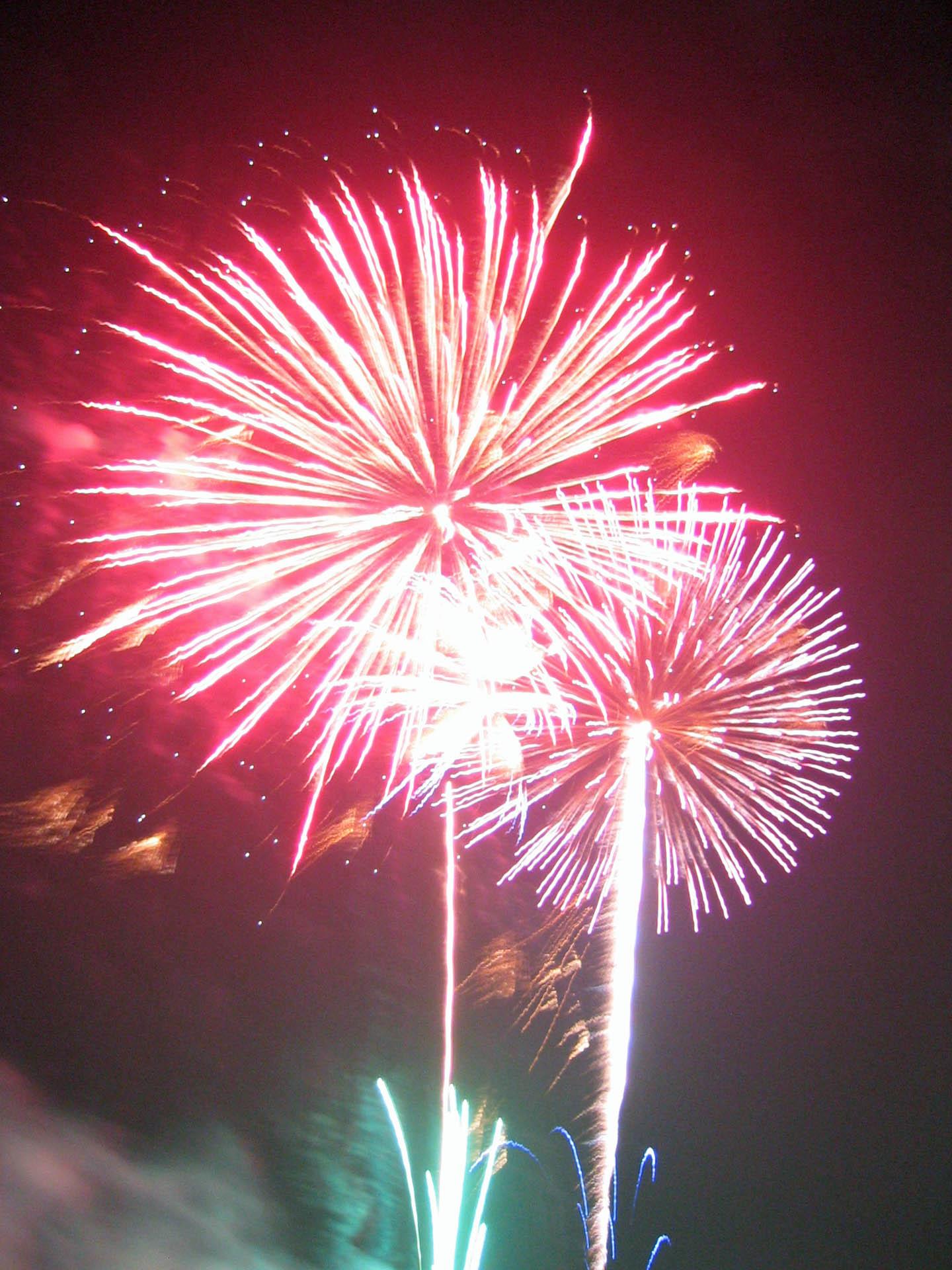 盛岡花火の祭典2005 3