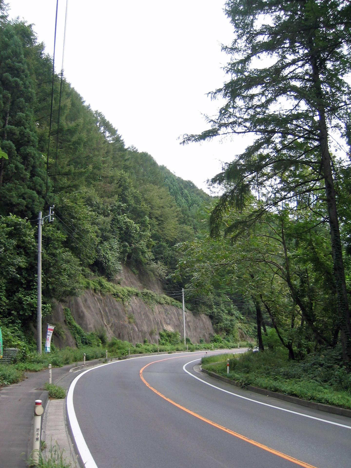 道路の横に大きくそびえ立つ岩と木
