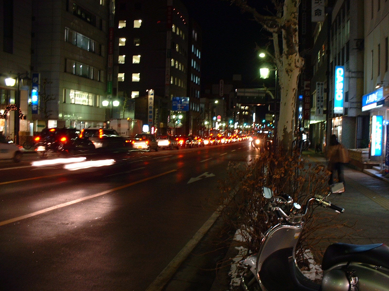 夜の中央通